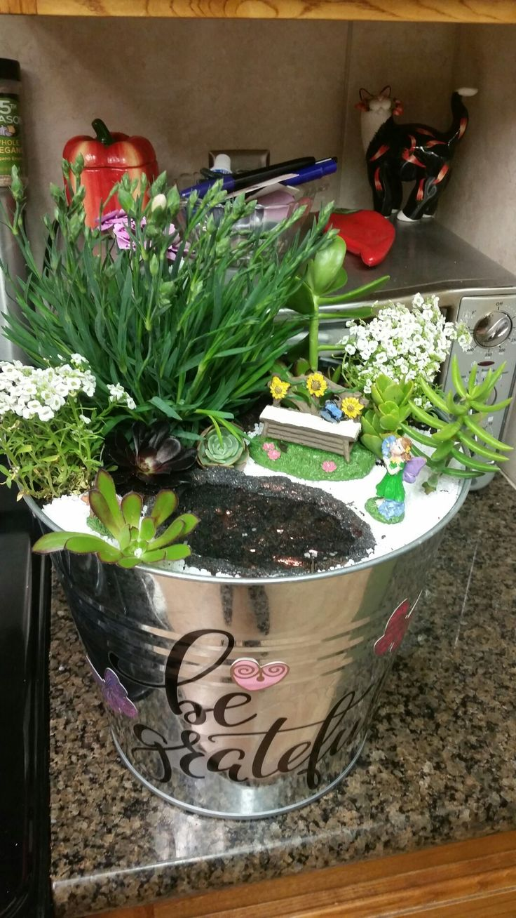 Diy Fairy garden in tin bucket. Easy to make. For the pond I used a mini cake mold shaped like a shell. Hot glued in black sand for pond floor.