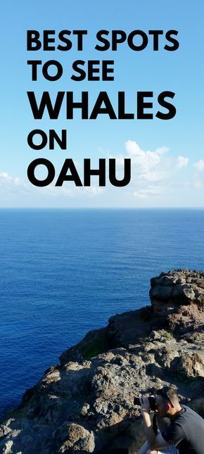 Best spot for whale watching in Oahu. Activities alternative to whale watching tours in Oahu. Lots of hikes on Oahu, do this one if Hawaii vacation is during best time for whale season! Things to do nearby beaches, snorkeling! Make a trip to this spot from Waikiki, Honolulu as an outdoor travel destination for bucket list budget adventures! It's free! Put binoculars on the checklist of what to pack for Hawaii packing list! Photography spots. Maui activities best to see whales. #hawaii #oahu
