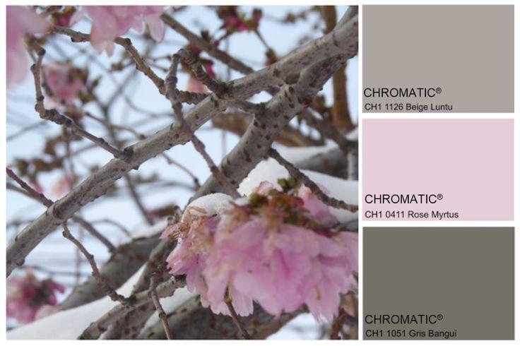 Douceur Hivernale. Association sophistiquée de bruns neutres et de roses doux. www.chromaticstore.com
