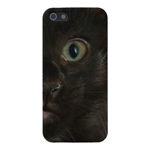 A close-up photograph of a black kittens eye for a cute, dark, iPhone case. $38.10