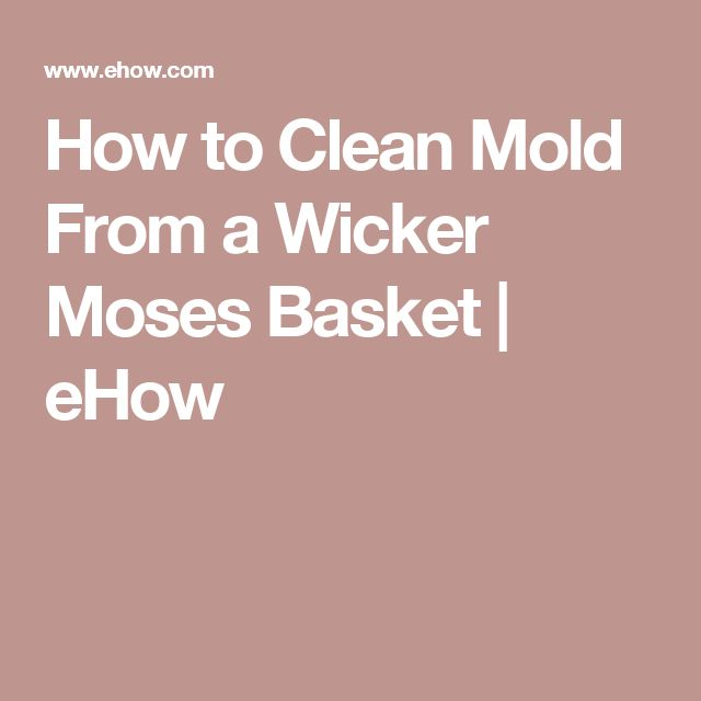 17 ideas about cleaning mold on pinterest mildew - How to remove mold stains from car interior ...