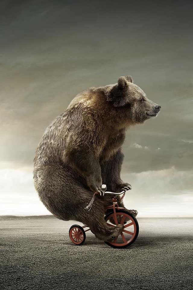 """""""Mom! Look at that funny thing. It's a bear riding a tricycle. That bear is TOO BIG for a tricycle!"""" #mazzyspins"""
