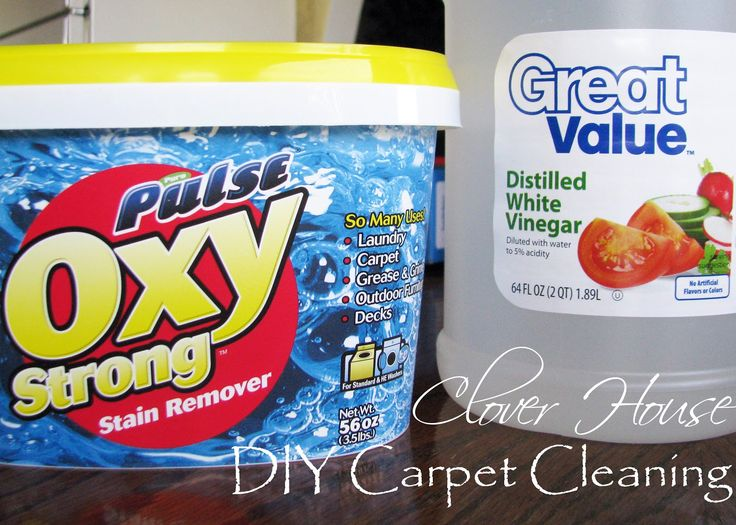 Clover House: DIY Carpet Cleaning  DIY Carpet Cleaning Mixture:  2 1/2 cups of vinegar  2 scoops of Oxy clean  Warm Water to the fill line on the tank    The clean water tank on this particular machine was about 2 to 2 1/2 gallons capacity.