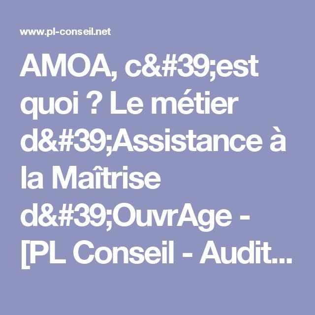 AMOA, c'est quoi ? Le métier d'Assistance à la Maîtrise d'OuvrAge - [PL Conseil - Audit et accompagnement des entreprises]
