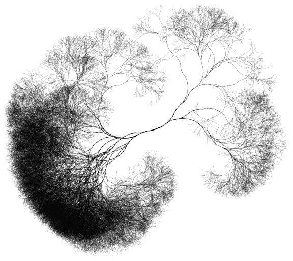 25  best ideas about neurons on pinterest