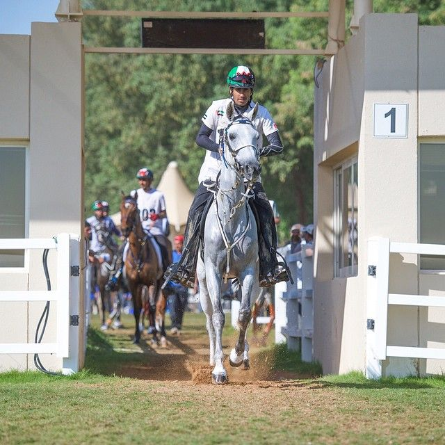 Rider Saeed Ahmed Jaber s_elharbi PHOTO maktoumz