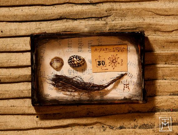 Miniature Cabinet of Curiosities Handmade by TalissaMehringer