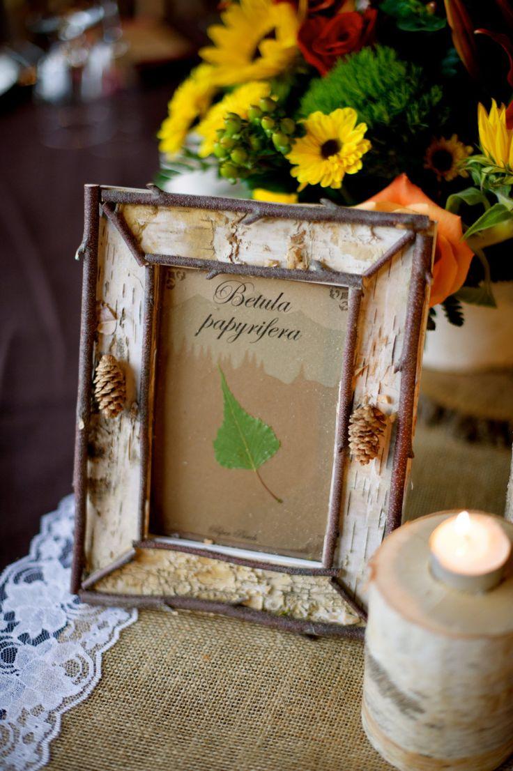 Birch Bark Frame by AdirondackBirchStyle on Etsy, $30.00
