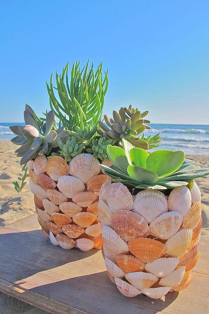 The Ultimate Guide To Easy Diy Gifts For Mom Twins Dish Diy Flower Pots Beach Crafts Seashell Crafts