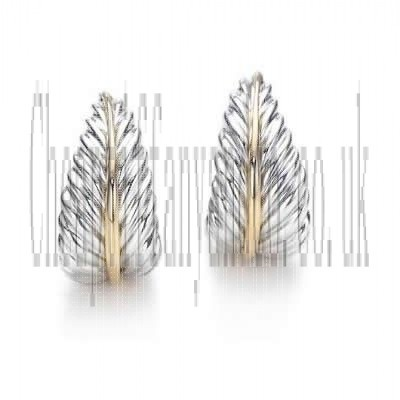 http://www.cheaptiffanyandco.co.uk/gorgeous-tiffany-and-co-earring-nature-leaf-hoop-silver-and-gold-171-wholesale.html#  Discounts Tiffany And Co Earring Nature Leaf Hoop Silver And Gold 171 Online