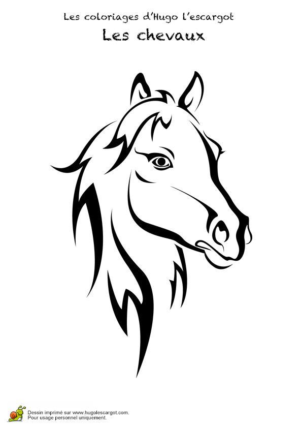 Dessin d'une tête de cheval pour illustrer la première page de cahier de coloriage                                                                                                                                                                                 Plus
