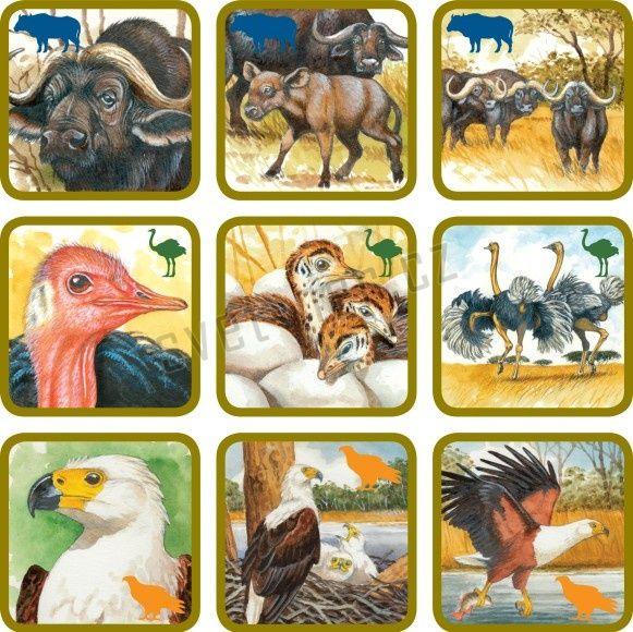 Pexetrio Plus Africká savana