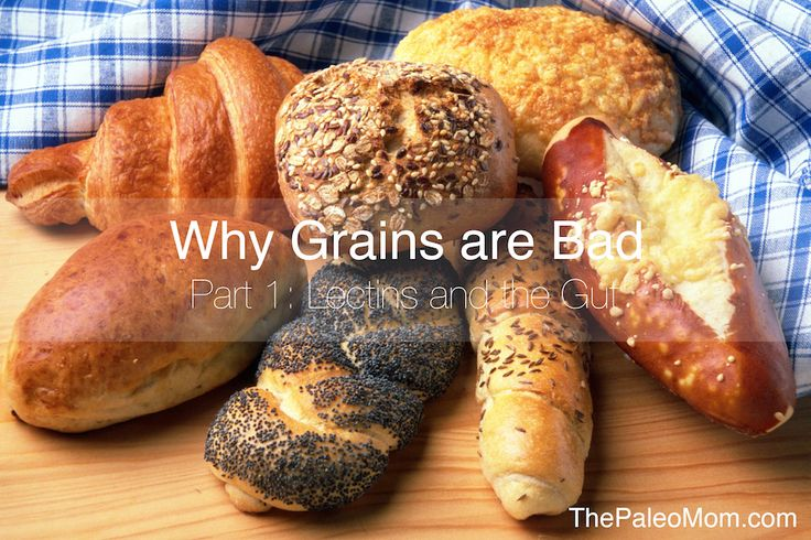 Why Grains Are Bad–Part 1, Lectins and the Gut | www.ThePaleoMom.com #Paleo #grainfree #glutenfree