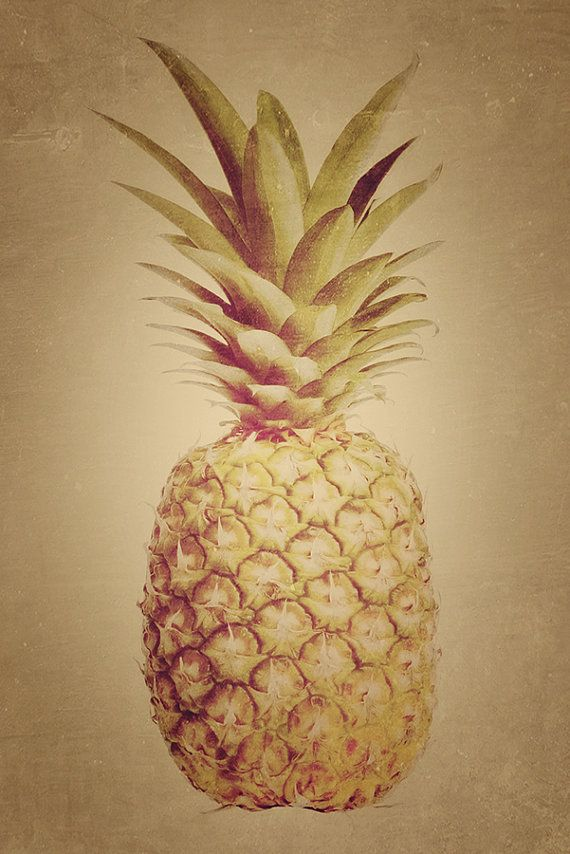 Vintage Pineapple art print by Finandivy on Etsy, $25.00