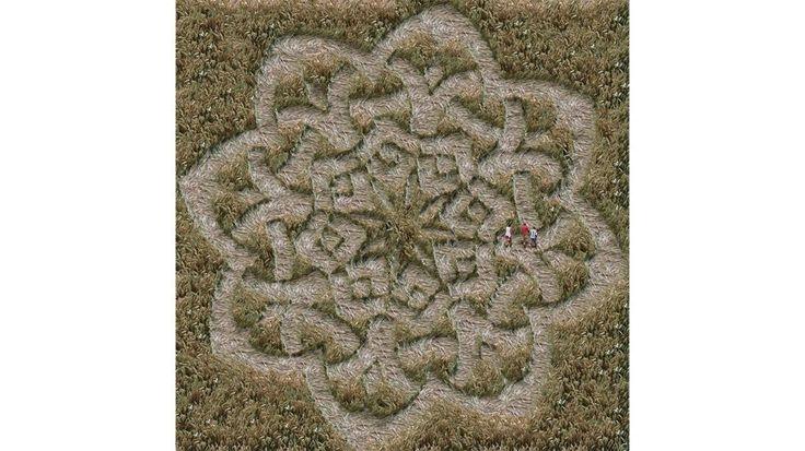https://weather.com/farming/news/crop-circle-farming-photos