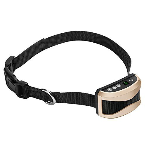 No Shock Dog Training Collar Mindsinglong Humane Anti Bark Collar for Small Medium Big Sized Dogs Stop Barking By Safe and Pain Free Vibration and Sound Stimuli  Gold -- You can find out more details at the link of the image.