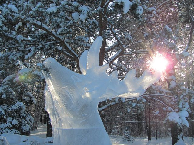 Ice sculpture at Devonian Botanic Garden