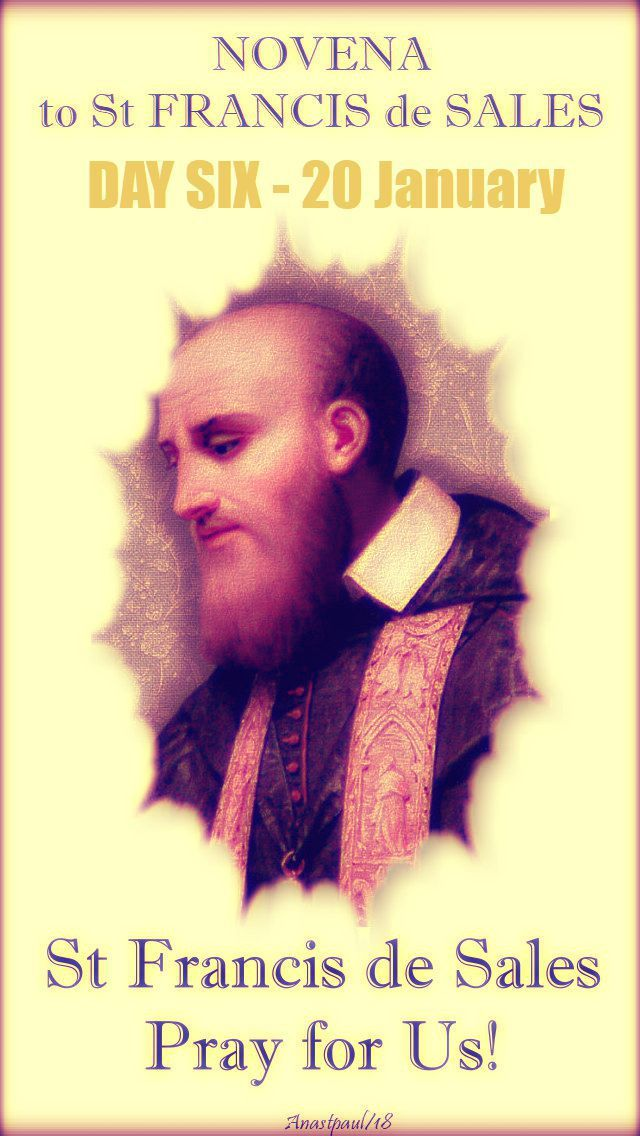 """Novena to St Francis de Sales Day SIX – 20 January  """"Do not pay any attention to the kind of work you do but rather to the honour that it brings to God, even though it may seem quite trivial.   Desire only to do the Divine Will, following Divine Providence, which is the disposition of Divine Wisdom.   In a word, if ...#mypic"""