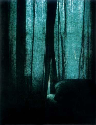 Daniel boudinet polaro d 1979 frontispice de la chambre claire de roland barthes cette - Barthes la chambre claire ...