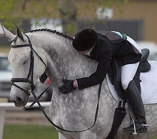 ♥: Hors Friendship, Google Search, Dressage Horses, Fleas Grey Hors, Appaloosa, Ahh Hors Mi, Photo, Hunters Jumpers, Equestrian