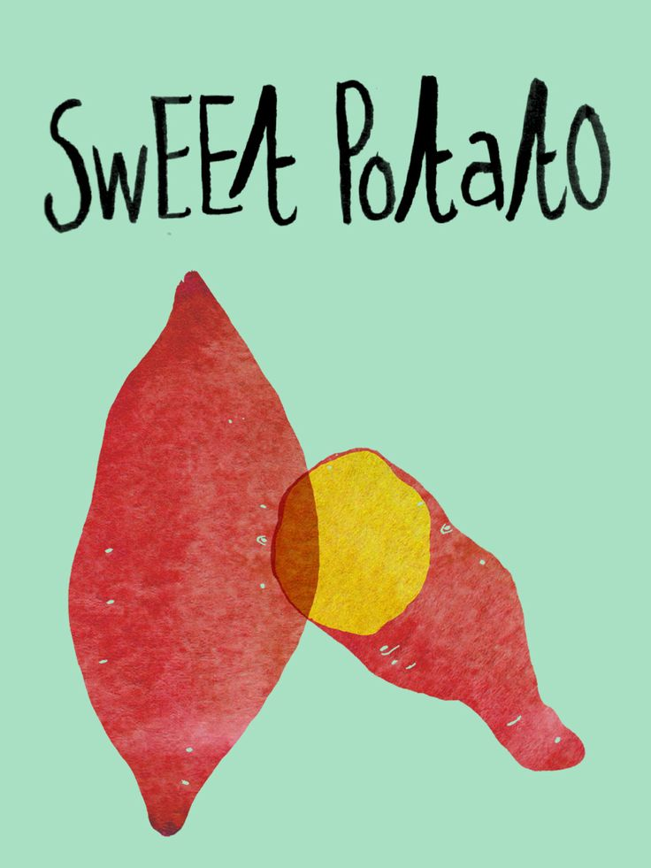 Keukenplaten : Sweet Potato Illustration