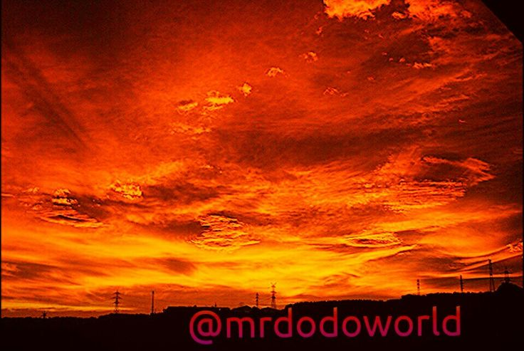 Magical Sunset  for more wonderful photos please follow me on instagram @mrdodoworld  #nightfall #landscape #dark #october #autumn #orangesky #burningsky #countryside #red #burning #sunsetlovers #madness #scenery #outdoor #view #sunset #panorama #peaceful #redsky #skyporn #sky
