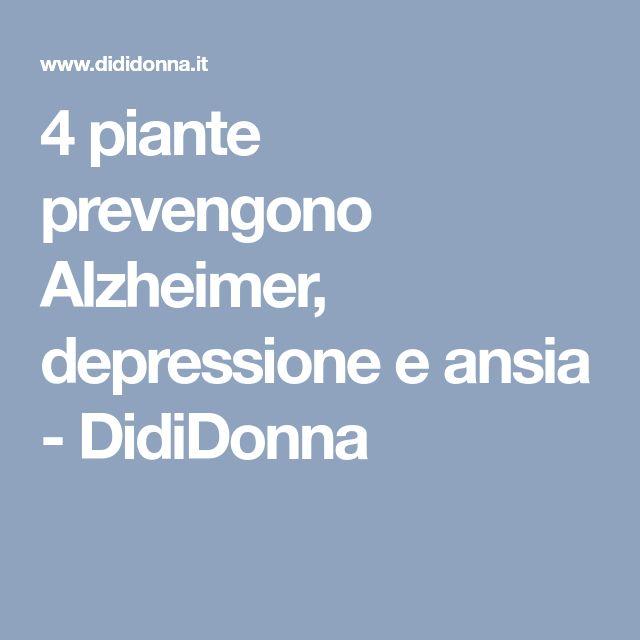 4 piante prevengono Alzheimer, depressione e ansia - DidiDonna