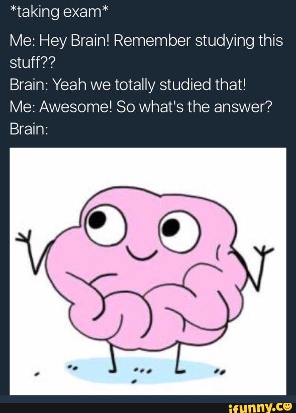 exam, school, brain, relatable, funny
