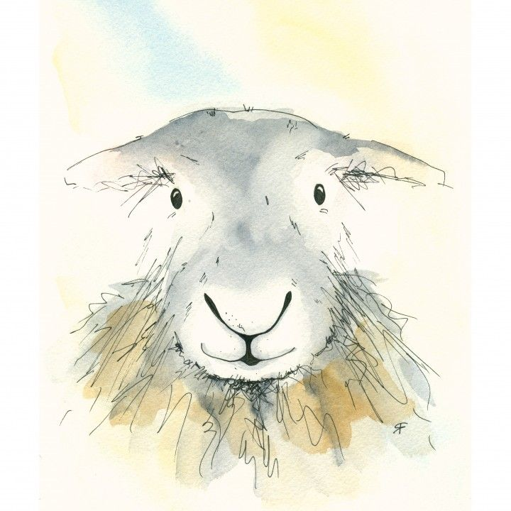 Agatha the Herdwick, original watercolour available as a greetings card from www.beccafielding.com