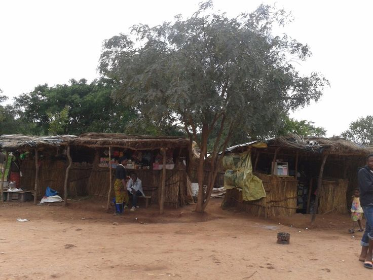 an overview of the michael finkels the hadza Unlike most editing & proofreading services, we edit for everything: grammar, spelling, punctuation, idea flow, sentence structure, & more get started now.