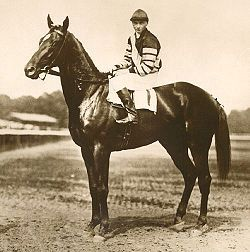 Man o' War, (March 29, 1917, Nursery Stud farm, Lexington, Kentucky – November 1, 1947, Faraway Farm) is considered one of the greatest Thoroughbred racehorses of all time.[2] During his career just after World War I, he won 20 of 21 races and $249,465 in purses.