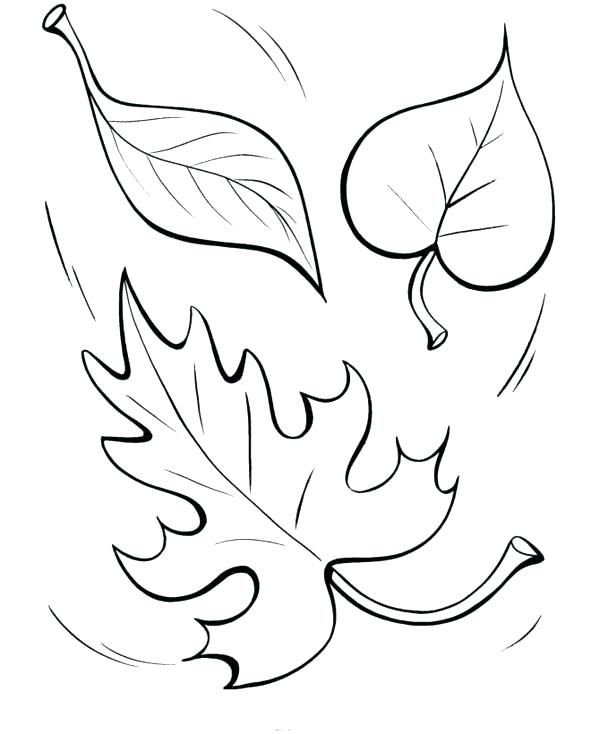 Fall Leaves Coloring Pages - Best Coloring Pages For Kids Fall Coloring  Pages, Leaf Coloring Page, Shape Coloring Pages