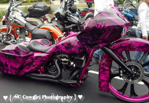Pink and Black Scull Harley