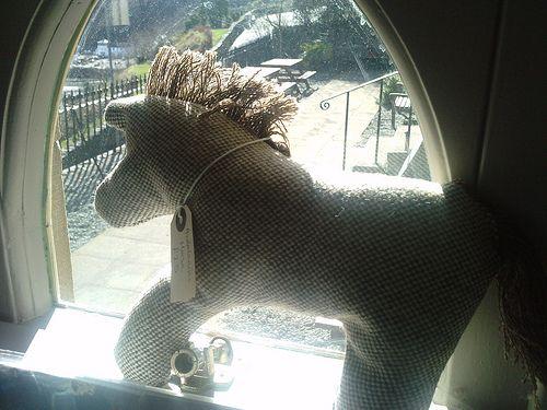 Ardalanish Horse enjoying the sunny weather