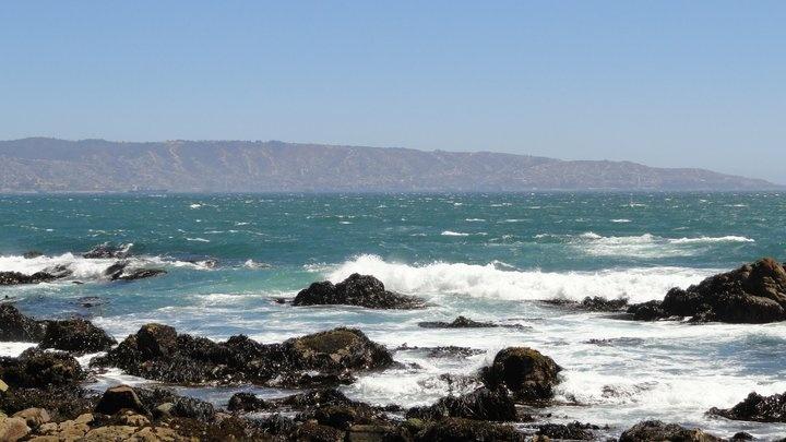 Playa Cochoa- Viña del Mar- V Región- Chile