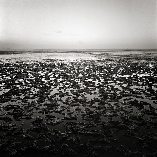 Fine Art Photography | Alexei Krasnikov | Dangast Bay At Low Tide