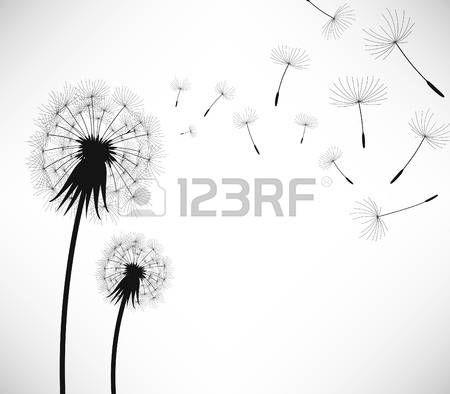 soffione: Tarassaco fiore di colpo di vento Vettoriali