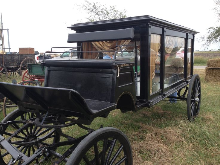 Buggy hearse for sale at Bee County auction