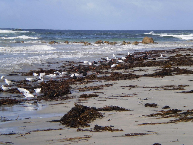 Peaceful Bay Beach