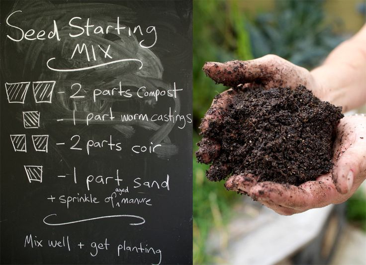 How to make Best Ever Seed Raising Mix