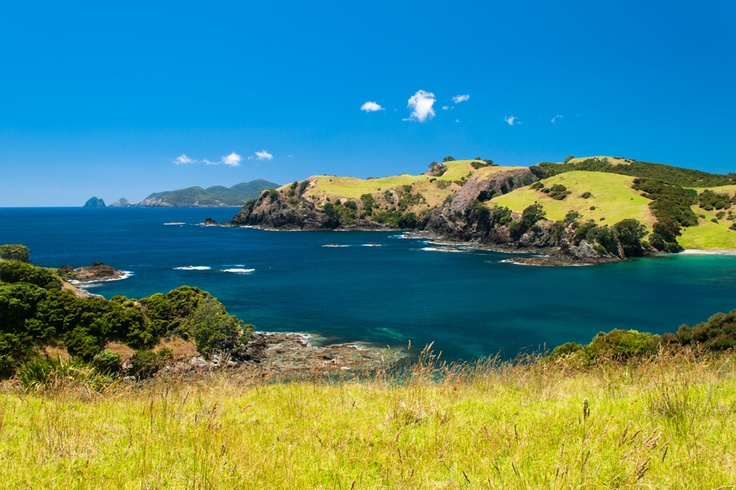 Bay of Islands | New Zealand