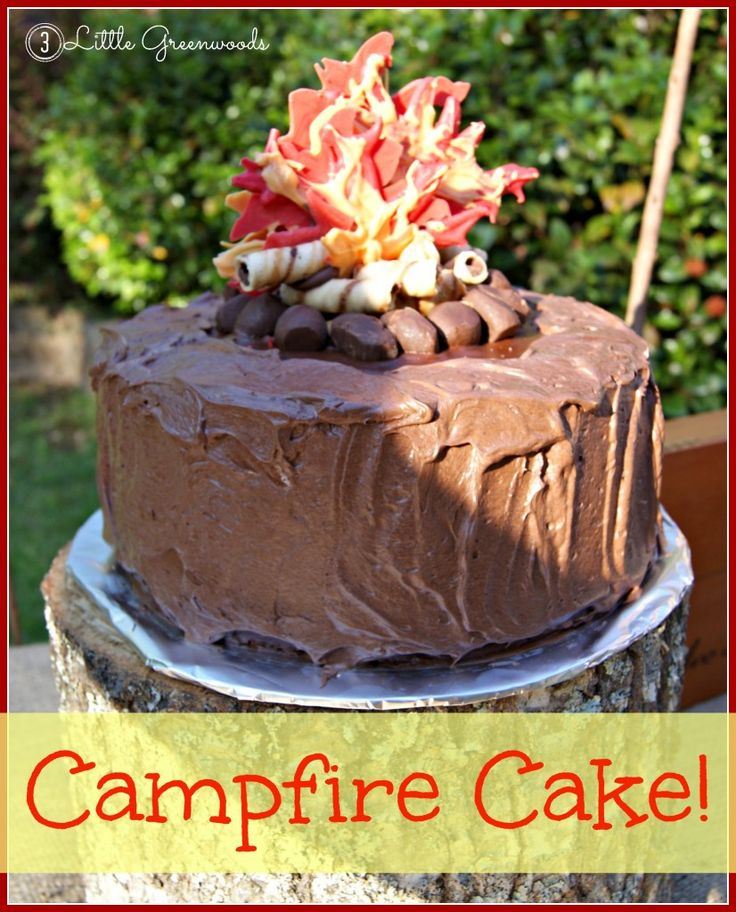 Fabulous Camping Birthday Party for Boys & Campfire Birthday Cake by 3 Little Greenwoods