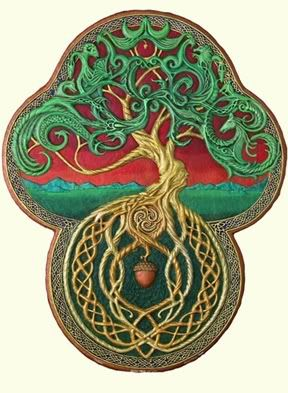 Celtic Tree Of Life Picture