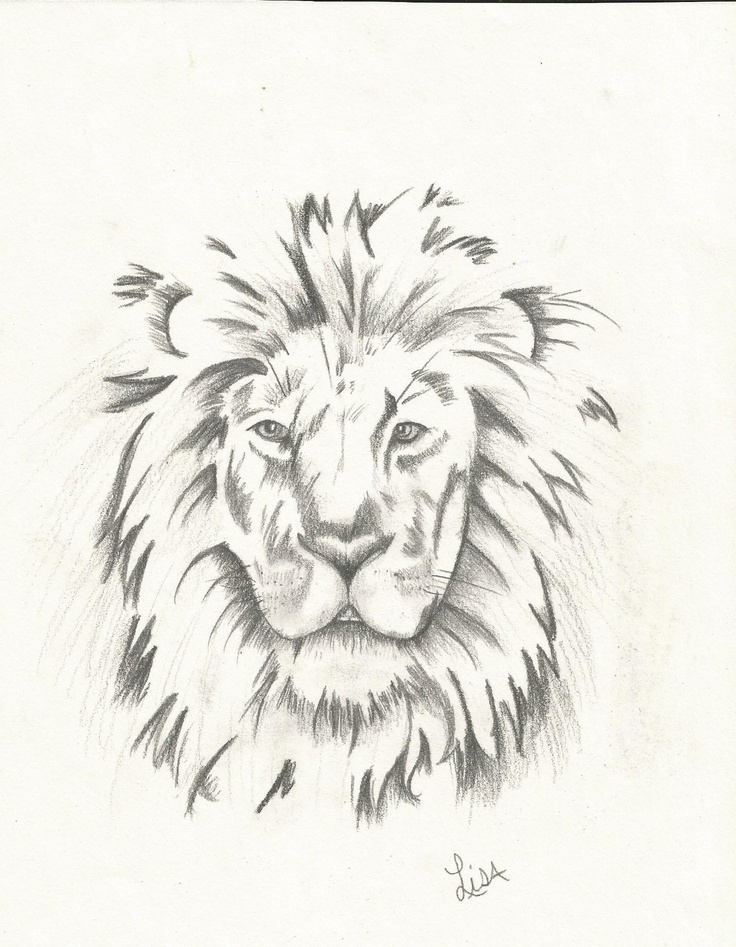 Lion head drawing in c...