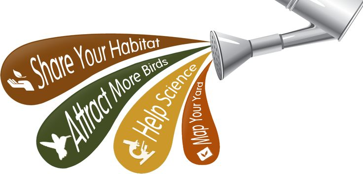YardMap | YardMap is a citizen science project designed to cultivate a richer understanding of bird habitat, for both professional scientists and people concerned with their local environments.