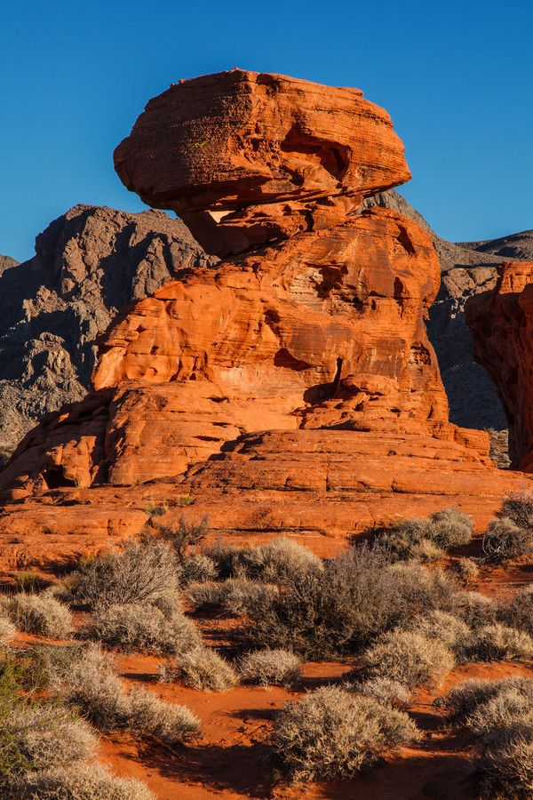 53 best valley of fire state park nevada images on pinterest
