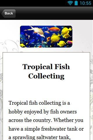 "Introducing.. ""Tropical Fish Guide""<p>Here's what you can get inside this guide:<p>African Tropical Fish<br>Colorful Tropical Fish<br>Different Classes Of Tropical Fish<br>Fresh Water Tropical Fish<br>Hiding Places In Tropical Fish Tank<br>Live Tropical Fish<br>Neon Lights For Tropical Fish Tank<br>Rainbow Tropical Fish<br>Setting-Up A tropical Fish Tank<br>Tetra Tropical Fish<br>Tropical Fish<br>Tropical Fish Aquarium<br>Tropical Fish Care<br>Tropical Fish Collecting<br>Tropical Fish…"