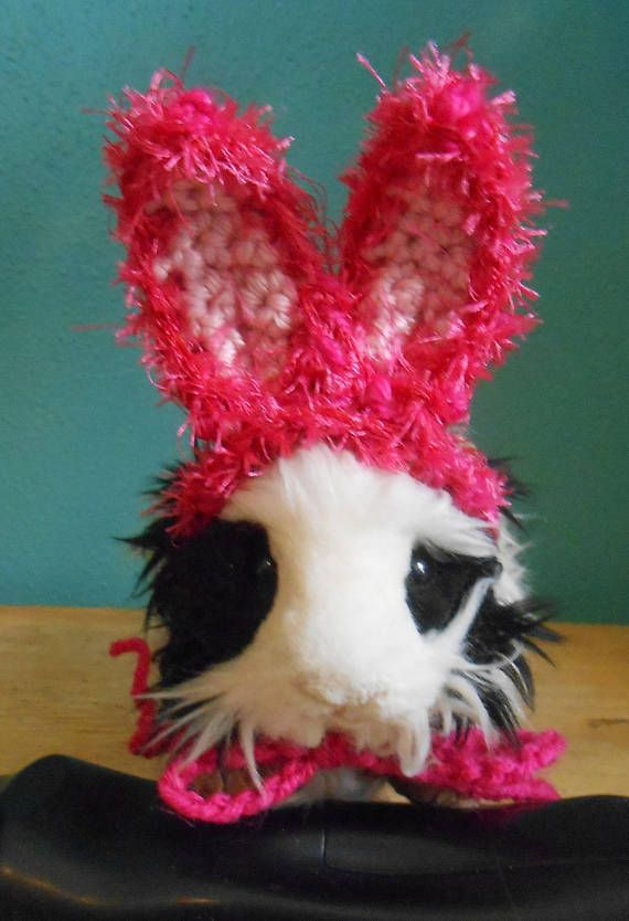 Guinea pig or Ferret Easter Bunny Ears Hat Pink Bunny Ears