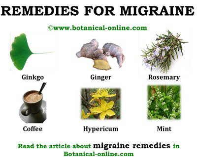 home remedies for migraine 12 best unit 4 images on adjectives 12113