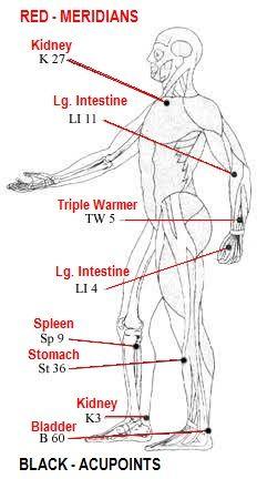 Acupoints-Boosting Immune System balancedwomensblog.com